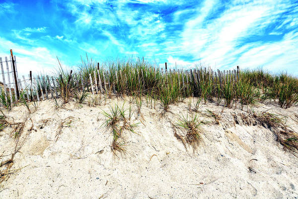 Photograph - Dune Height At Cape May 2008 by John Rizzuto