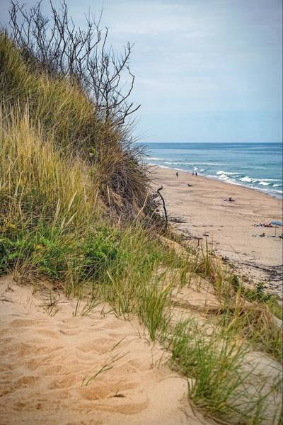 Photograph - Dune by Kendall McKernon