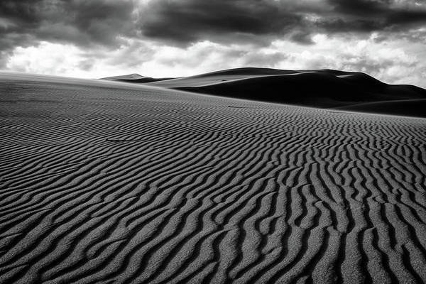 Photograph - Dune Lines by Stephen Holst