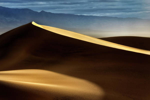 Wall Art - Photograph - Dune Mood by Nicki Frates
