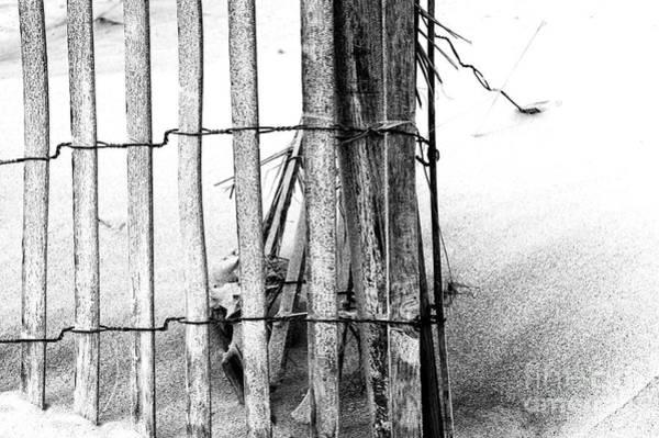 Wall Art - Photograph - Dune Study On Long Beach Island by John Rizzuto