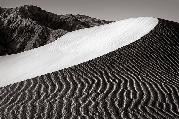 Wall Art - Photograph - Dune by Thorsten Scheuermann
