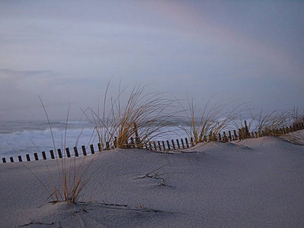 Photograph - Dune View 2 by  Newwwman