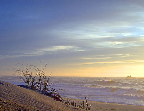 Photograph - Dune View 3 by  Newwwman