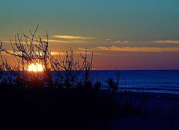 Photograph - Dune View I V by  Newwwman