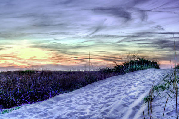 Photograph - Dune Walk IIi by Pete Federico