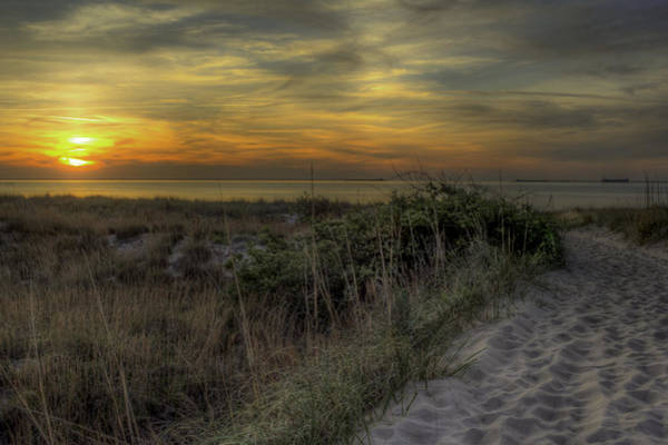 Photograph - Dune Walk Iv by Pete Federico
