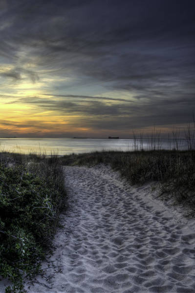 Photograph - Dune Walk by Pete Federico
