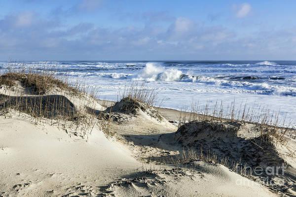 Wall Art - Photograph - Dunes And Beach by John Greim