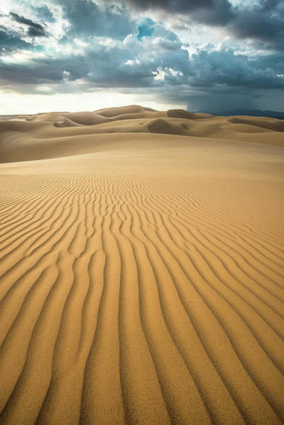 Photograph - Dunes And Distant Cloudburst by Alexander Kunz