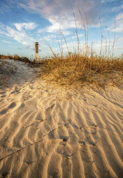 Photograph - Dunes And Lighthouse  - Sullivan's Island, Sc by Donnie Whitaker