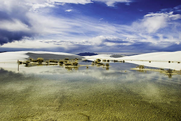 Wall Art - Photograph - Dunes And Reflections Three by Paul Basile