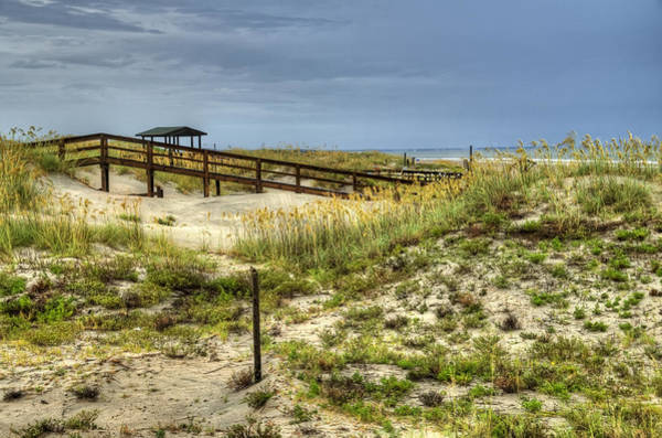 Wall Art - Photograph - Dunes At Tybee Island by Tammy Wetzel