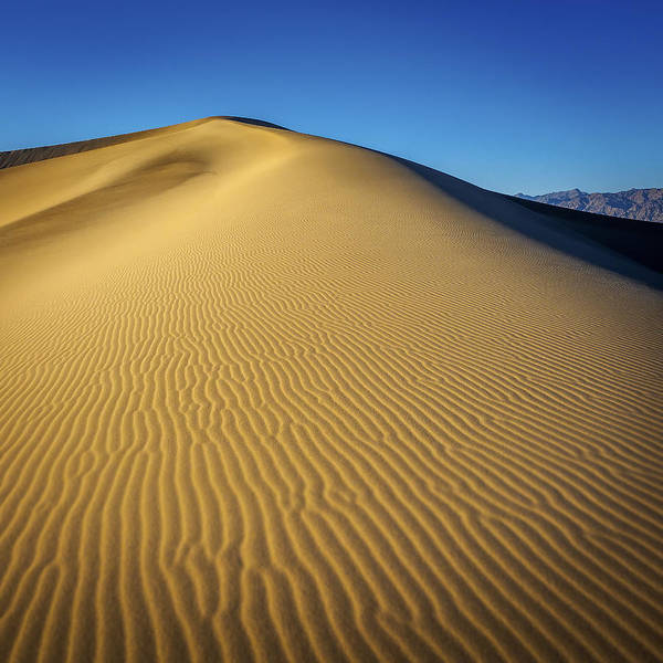 Wall Art - Photograph - Dunes Of Death Valley by Steve Spiliotopoulos