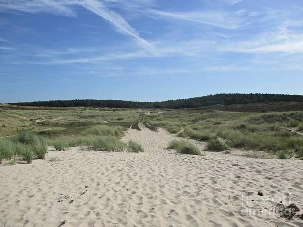 Photograph - Dunes Of Schoorl by Chani Demuijlder