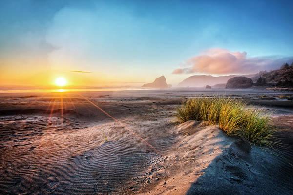 Photograph - Dunes On The Pacific Coastline by Debra and Dave Vanderlaan