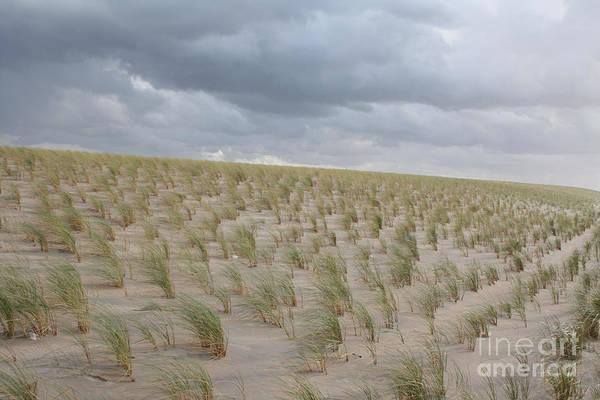 Photograph - Dunes by Wilko Van de Kamp