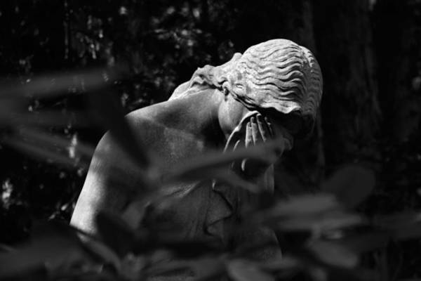 Photograph - Dunkelheit - Darkness by Marc Huebner