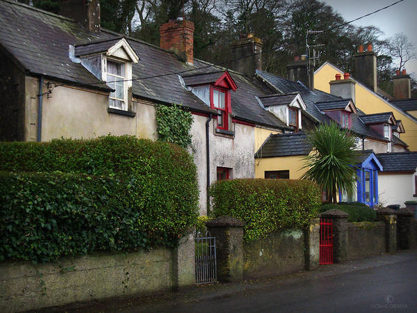 Photograph - Dunmore Houses by Tim Nyberg