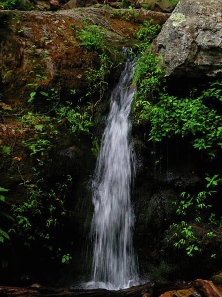 Photograph - Dunnfield Creek Falls by Raymond Salani III