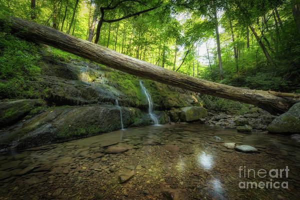 Wall Art - Photograph - Dunnfield Creek  by Michael Ver Sprill