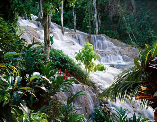 Photograph - Dunn's River Falls Jamaica by Cliff Wassmann