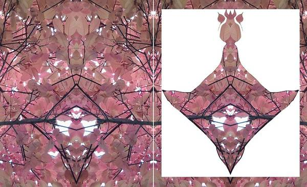 Photograph - Duo Panel Showing How This Piece Of Art Emerged From A Fractal Of A Tree Leaf Photo by Julia Woodman