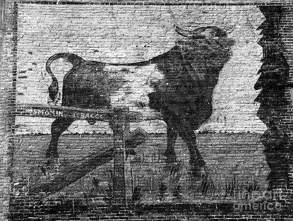 Tobacco Wall Art - Photograph - Durham's Bull by David Lee Thompson