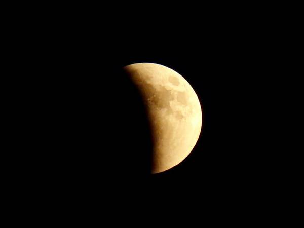 Photograph - Aries Moon During The Total Lunar Eclipse 2 by Judy Kennedy