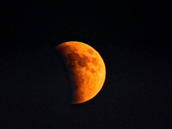Photograph - Aries Moon During The Total Lunar Eclipse by Judy Kennedy