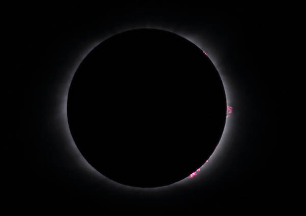 Photograph - Totality by Daniel Reed