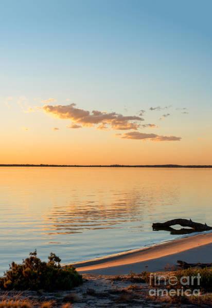 Photograph - Dusk At Lake Bonney by Ray Warren