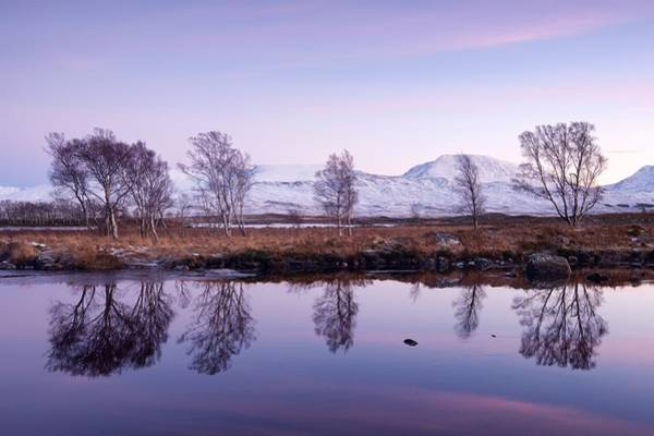 Photograph - Dusk At Loch Ba by Stephen Taylor