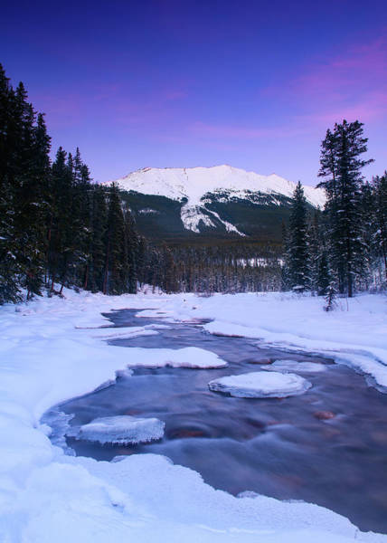 Photograph - Dusk At Sunwapta by Michael Blanchette