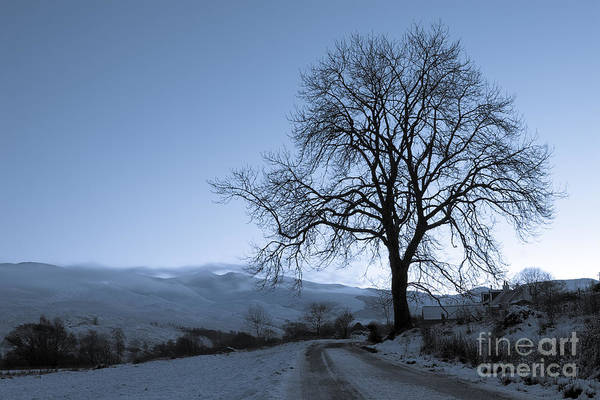 Wall Art - Photograph - Dusk In Scottish Highlands by David Bleeker