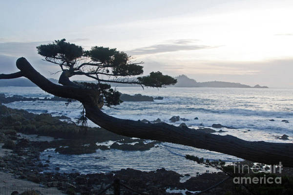 Photograph - Dusk Over Monterey by Rick Locke