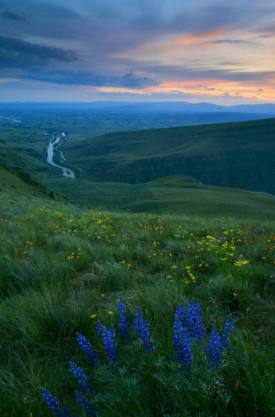 Parsley Photograph - Dusk Over The Yakima Valley by Mike  Dawson