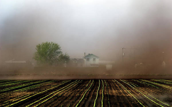 Photograph - Dust Storm by Steve Somerville
