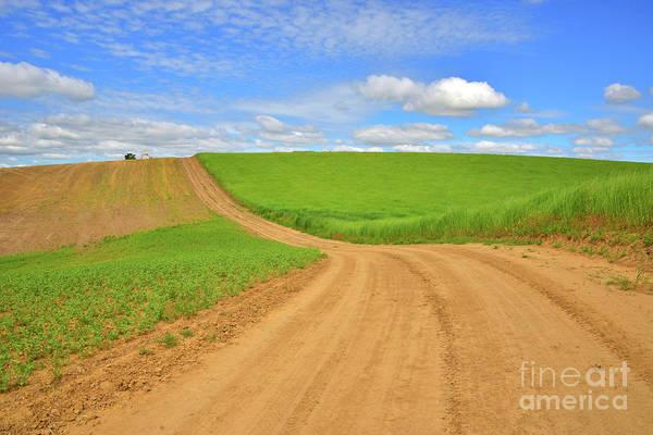Dirt Roads Photograph - Dusty Roads by Mike Dawson