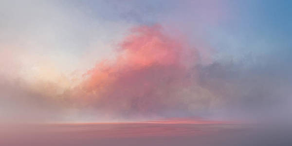 Wall Art - Painting - Dusty Rose by Lonnie Christopher