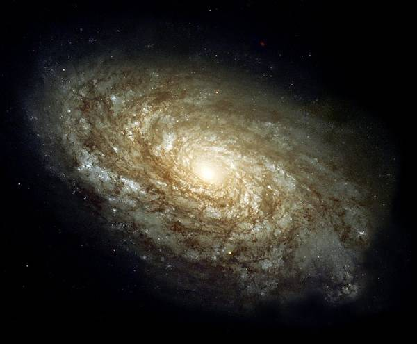 Painting - Dusty Spiral Galaxy  by Hubble Space Telescope