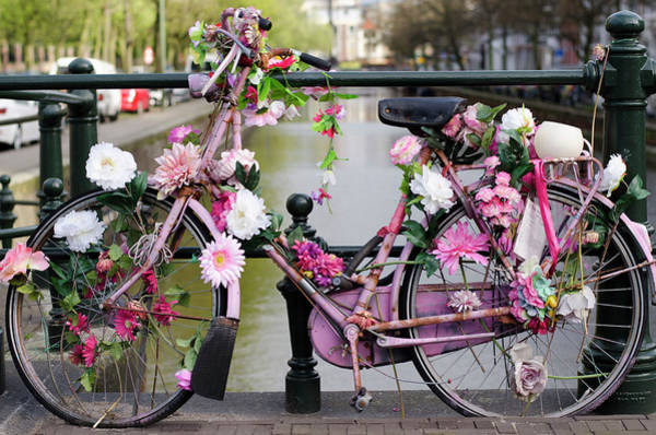 Photograph - Dutch Bike With Flowers by Alexandre Rotenberg