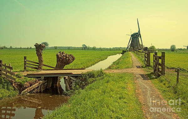 Photograph - Dutch Countryside by Ariadna De Raadt