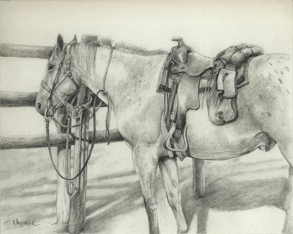 Appaloosa Drawing - Dutch Creek Appy by Margi Greene