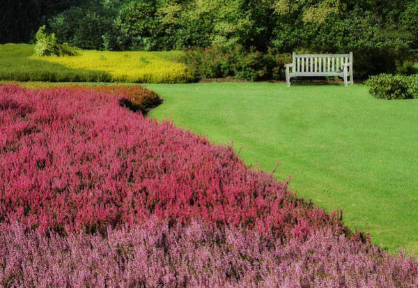 Photograph - Dutch Hay And Garden Bench In Holten Holland by Ginger Wakem