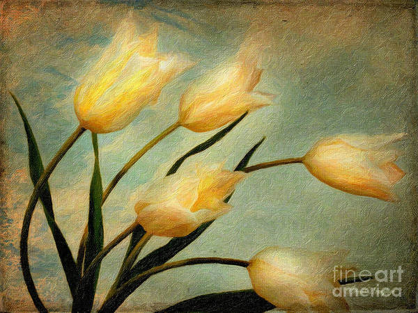 Painting - Dutch Tulips by Chris Armytage