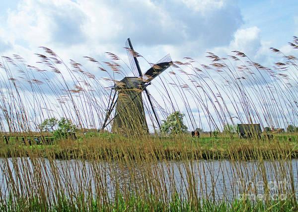 Wall Art - Photograph - Dutch Windmills 15 by Randall Weidner