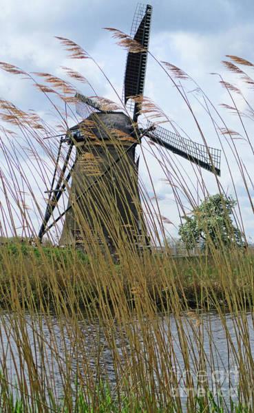 Wall Art - Photograph - Dutch Windmills 16 by Randall Weidner