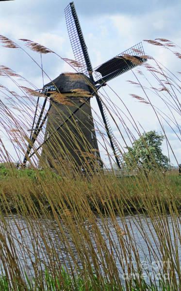 Wall Art - Photograph - Dutch Windmills 17 by Randall Weidner