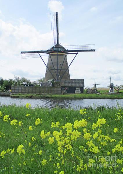 Wall Art - Photograph - Dutch Windmills 24 by Randall Weidner